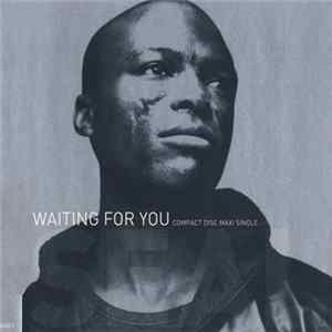 Seal - Waiting For You Album